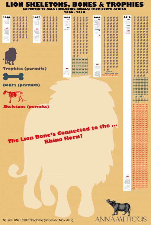 Lion bone exports from South Africa to Asia increased significantly between 2006 and 2010 (click to enlarge). Image © Annamiticus