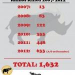 South Africa: 633 Rhinos Killed in 353 Days