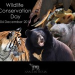 'Wildlife Conservation Day' is Dec. 4: U.S. Launches Global Campaign Against Wildlife Trafficking