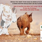 Vietnam: Making it Socially Unacceptable to Use Rhino Horn