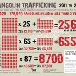 Pangolin Trafficking: 2011 to April 2013 [Infographic]