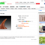 Chinese Website Displays Adverts for Rhino Horn, Bear Bile [UPDATED]