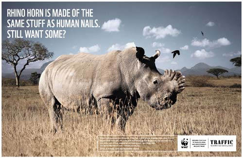 WWF and TRAFFIC launched an innovative visual campaign against rhino horn consumption in Vietnam.