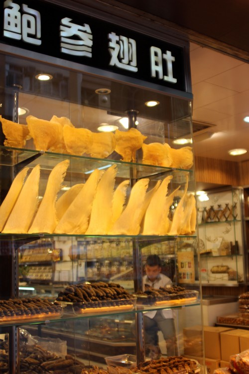 Shark fins on display in a Hong Kong shop. Photo © A. Andersson