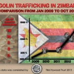 Historical Conviction in Zimbabwe for Pangolin Trafficker