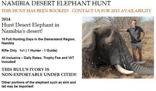 Namibia Desert Elephant Hunt