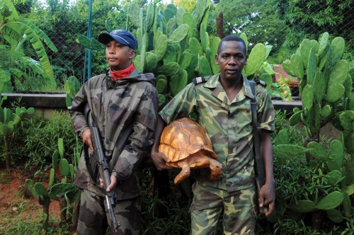 Guarding ploughshare tortoises in Madagascar. PHOTO: Turtle Conservancy
