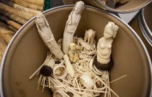 Confiscated illegal ivory carvings were packed into barrels and incinerated. Photo:  Alex Hofford