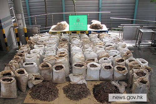 Two tons of pangolin scales from Cameroon via Malaysia were intercepted by Hong Kong Customs officers on June 11, 2014. Photo via news.gov.hk