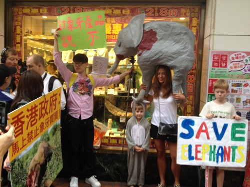 A handmade elephant carcass model, placards and child dressed as an elephant.  PHOTO: Astrid Andersson
