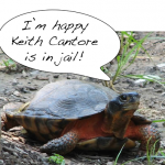 Louisiana Court Sentences Turtle Trafficker to Prison