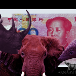 Will China's Falling Yuan Impact Illegal Wildlife Trade?