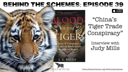 Tune in to the Behind the Schemes podcast to hear what investigator Judy Mills has to say about China's ongoing scheme to circumvent international law, profit from commercial breeding of captive tigers - and ultimately push wild tigers into extinction.