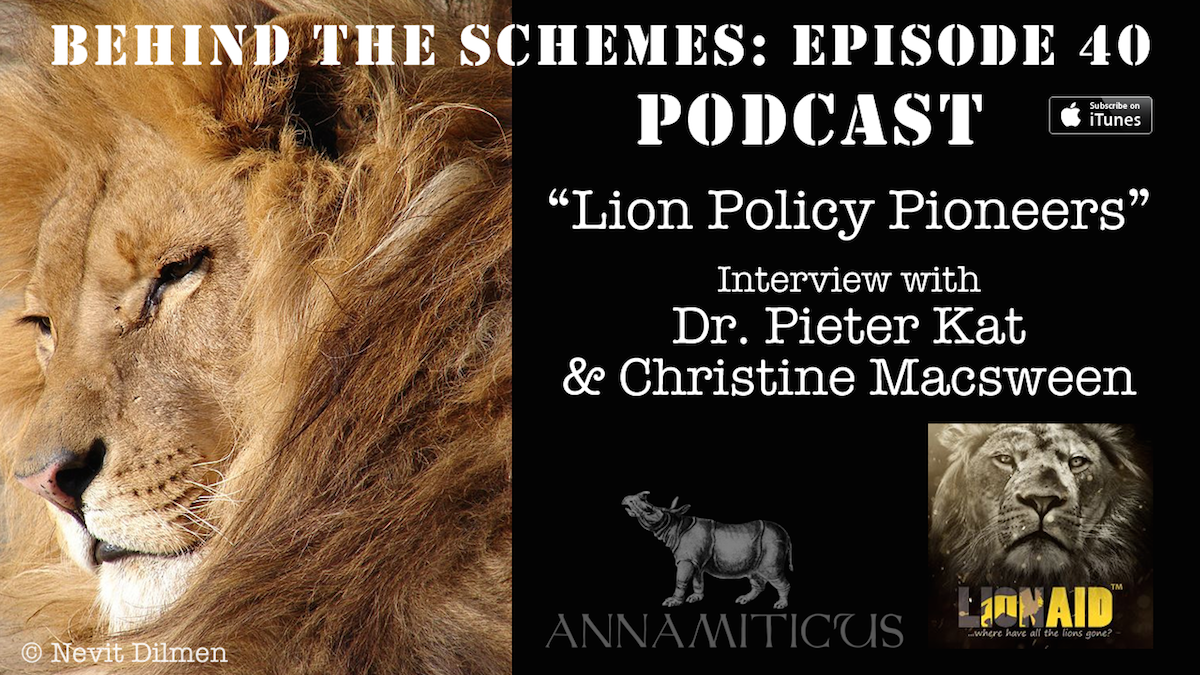 In Episode 40 of the Behind the Schemes podcast, we're talking about African lions and the haunting spectre of trade.