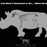 The Lion Bone's Connected to the … Rhino Horn?