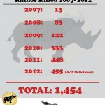 South Africa: 455 Rhinos Killed in 289 Days