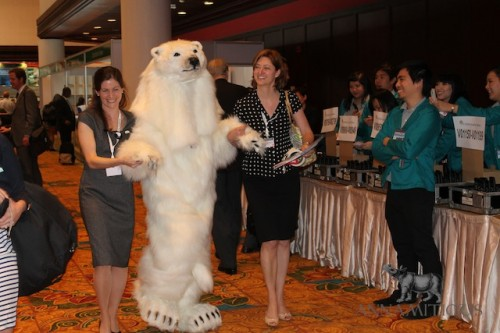 Polar bears did not receive the required votes to be uplisted to Appendix I. Photo by Annamiticus