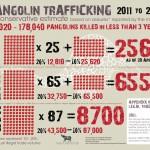 Pangolin Trafficking: 2011 to April 2013 [Infographic]