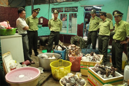 Forest Protection Department authorities examine confiscated wildlife products. CREDIT: © WCS Vietnam.