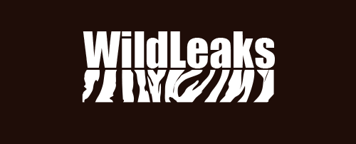WildLeaks is the first, secure, online whistleblower platform dedicated to Wildlife & Forest Crime. WildLeaks logo used with permission.