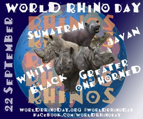 All five rhino species are celebrated on World Rhino Day!