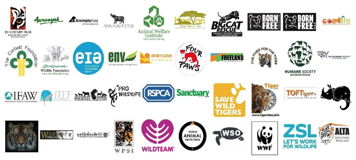 45 NGOs call for an end to tiger farming and an end to all tiger trade.